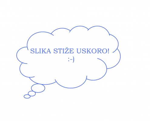 sLIKA STIZE_TU